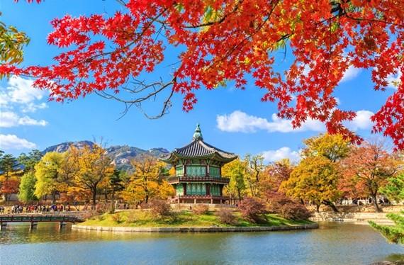 Hedon angažira budistički hram u Busanu.